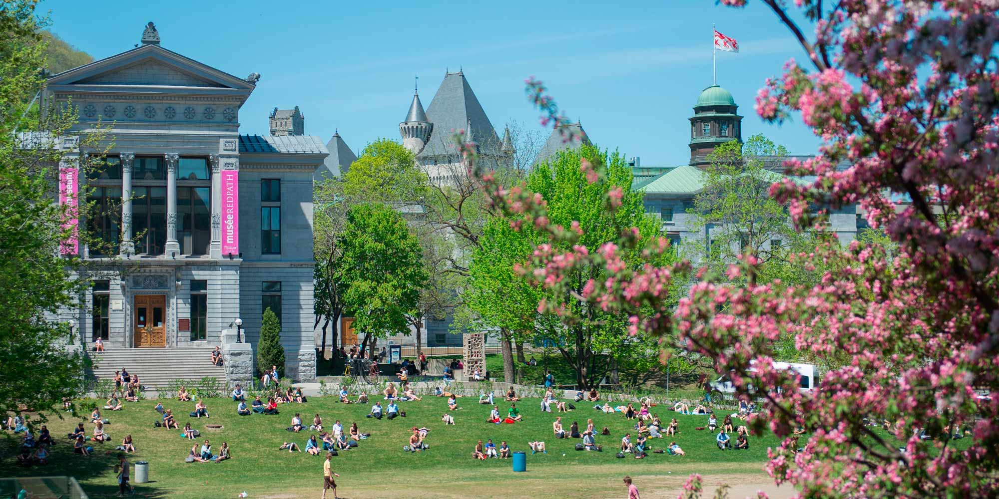 Learn quebec french