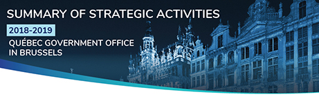 Summary of the strategic activities 2018-2019